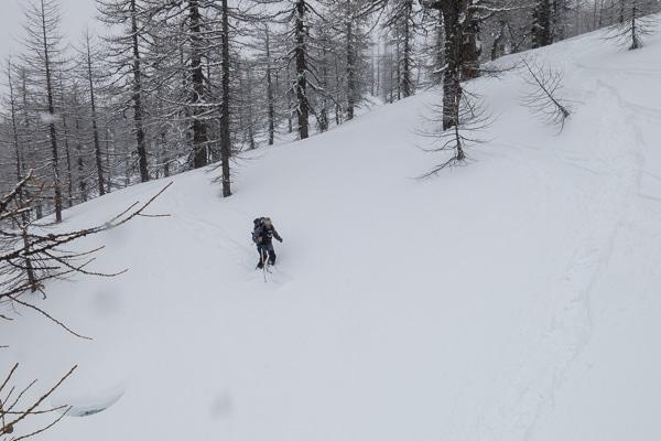 Ski en forêt